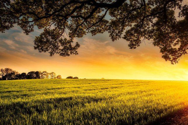 10 Cara Menumbuhkan Cinta kepada Allah